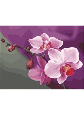 """Картина по номерам. Букеты """"Розовые орхидеи"""" 40*50см KHO1081 Идейка"""