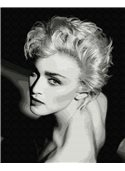 """Картина по номерам. Brushme """"Элегантность в черно-белом"""" GX9954 40*50"""