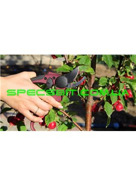 Секатор садовый 190 мм Presto (Престо) 5006