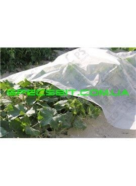 Агроволокно укрывное Presto (Престо) 30 г/м2 1,6-100